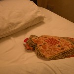 ナゾの足跡のことはひとまず忘れて、ベッドのなかには、昔なつかし湯たんぽが入れてあった。標高1700m以上、赤道付近とはいえ10度以下まで冷え込む朝晩に、うれしいおもてなしの一品。各部屋、基本的に暖房はない。