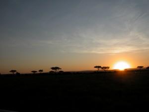 何度見ても美しい。毎朝5時起床、過酷なアフリカン・ライフだが、早起きは三文の得。