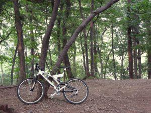 ロードバイク派を自認していたものの、MTBが持つ抜群の走破性能に惚れ込むことに。リアにはエアサスペンションを備えていた。(2000年/撮影=bg)